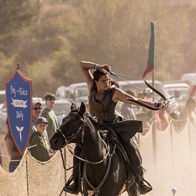 Medieval Festival of Courage 2015