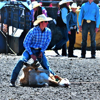 2017 Jr. Rodeo Events