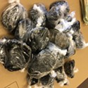 Task Force Finds 6 Pounds of Heroin in Bust