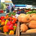 <i>Locally Grown: America's New Food Revolution</i>