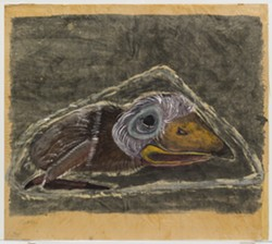 Nestling (1940) by Morris Graves – MoMA