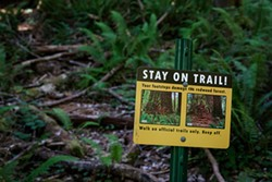 "PHOTO BY MAX FORSTER - Visitors are asked to walk on designated trails in order to prevent the damage caused by ""social"" trails."
