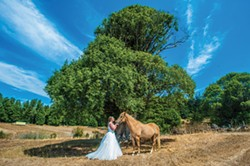 CHRIS TUITE PHOTOGRAPHY - Jenna Sutton and Cheyenne, her ride to the wedding.
