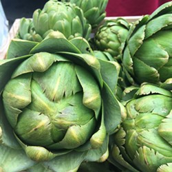 Artichokes from Earthly Edibles Farm - Uploaded by NCGA Ivy