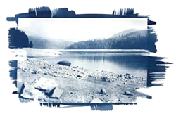 Cyanotype from photography - Uploaded by Katy Warner