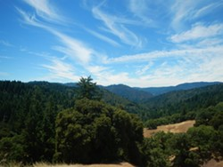View up Chamise Creek watershed from Heartwood Mountain Sanctuary. - Uploaded by Eel River Recovery Project