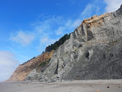 PHOTO BY MIKE KELLY - Dangerous Humboldt bluffs full of fossils and falling siltstone.