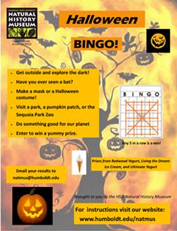 natmus_bingo_flyer_20.10.10b_final.png