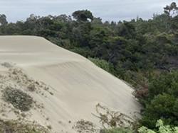 Samoa Dunes & Wetlands Conservation Area - Uploaded by friendsofthedunes