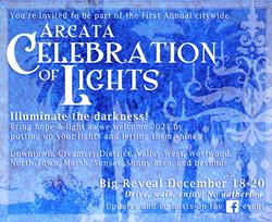 celebration_of_lights.png