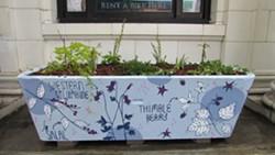 One of the Clarke's New Native Plant Gardens - Uploaded by clarkemuseum