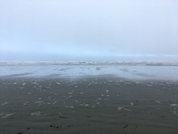 PHOTO BY SIMONA CARINI - Fog can tame the ocean's presence on a mind-clearing walk at Clam Beach.