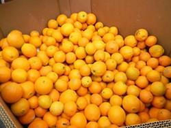 90638f30_oranges.jpg