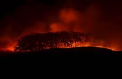515firepic1-oakwoodlandrxburnnightcrop.jpg
