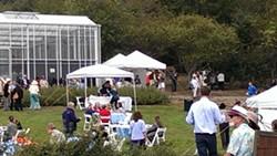 92b23be1_hbg_gala_tents_-_people_-_greenhouse.jpg
