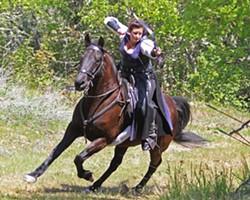 rogue_mounted_archers_2015.jpg