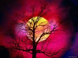 samhain.jpg