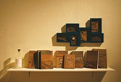 PHOTO COURTESY OF COLLEGE OF THE REDWOODS - On the shelf at Nicole Antebi's video installation show.