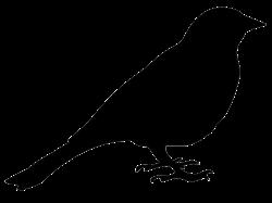 0521269c_bird-silhouette-sitting-bird.png