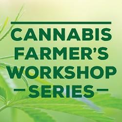 f2b68f68_cannabis_workshop_series_pic.jpg
