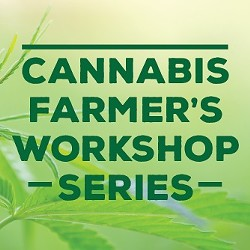 f4a7aea2_cannabis_workshop_series_pic.jpg