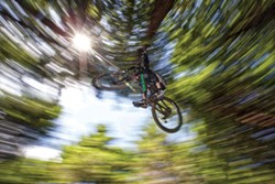 ROCKY ARROYO - Jhon Bonham takes flight in the forest.