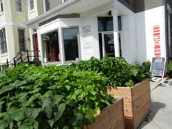 PHOTO BY HEATHER JO FLORES - Small, deep planters along the side of a sunny driveway can grow a surprising amount of food.
