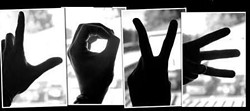 ba63fb37_love.jpg