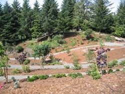 a39635a7_temperate_garden.jpg
