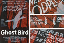 dd690967_04_ghostbird_poster.jpg