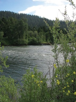 PHOTO BY HOLLY HARVEY - Klamath River near Orleans.