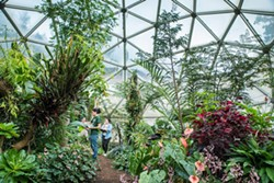 An indoor Eden at HSU. / Courtesy of Humboldt State University