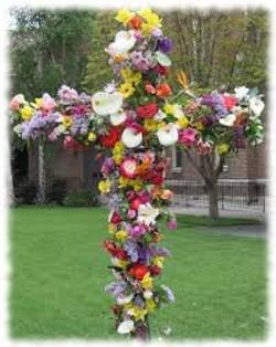883a097e_flowering_of_the_cross.jpg