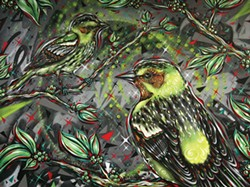 PHOTO BY KEN WEIDERMAN - Warbler Party by Christopher Dmise.