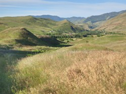 PHOTO BY BARRY EVANS - White Bird Canyon, site of the first battle of the Nez Perce War, June 17, 1877. The Nez Perce were camped in the valley to the right of the photo, while U.S. Army troops attacked from the higher ground to the left before being routed.