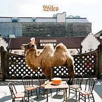 <em>Wilco (The Album)</em>