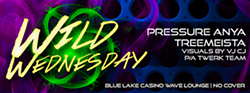 0bcd02b7_wildweds-fbcover1.png