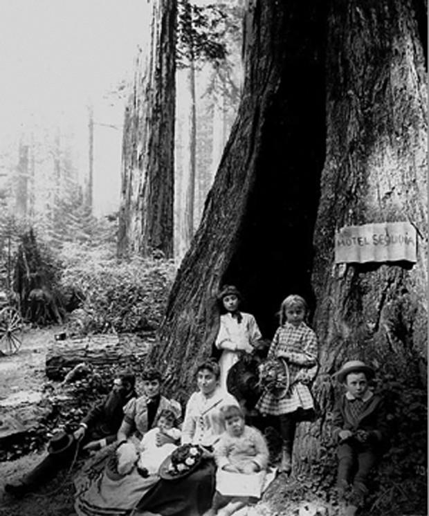 Women of the Pacific Northwest - PHOTO COURTESY OF ARCATAPLAYHIUSE.COM
