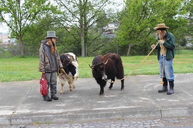 Yak Men on the way to town - PHOTO BY BOB DORAN