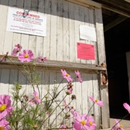 DeVaul's own home, ranch cookhouse condemned