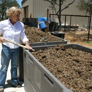 Anatomy of a compost pile: Cultivating better home produce means getting your hands out of the dirt and into the soil