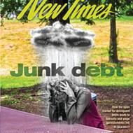 Junk debt: How the open market for delinquent debts leads to lawsuits and wage garnishments
