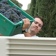 Do you yearn to be a winemaker?