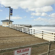 Super swell shuts down Central Coast pier but brings out the champ