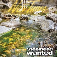 Steelhead wanted: Conservation groups collaborate to reinvigorate SLO County's fisheries and improve the quality of its watersheds