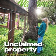 Unclaimed property: Nobody wants to take responsibility for maintaining a little piece of no man's land in Cambria