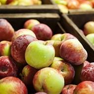 Your dream apple awaits! Finding the perfect peak-season apple at Gopher Glen