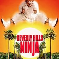 Guilty Pleasures: Beverly Hills Ninja