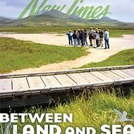 Between land and sea: Morro Bay's eelgrass population needs help