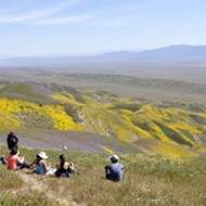 Carrizo Plain remains on Zinke's monument review list